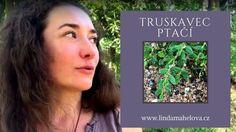 Článek o truskavci ptačím najdete na blogu: http://lindamahelova.cz/letni-ocista-truskavcem/