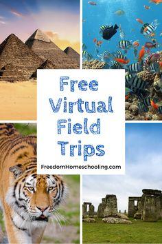Virtual Field Trips | Freedom Homeschooling