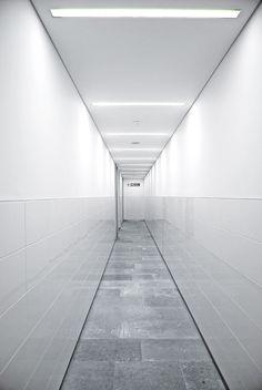 Natural Hystory Museum, London  interior design. Innenarchitektur . design d'intérieur   Design: Antonio Cavallaro  