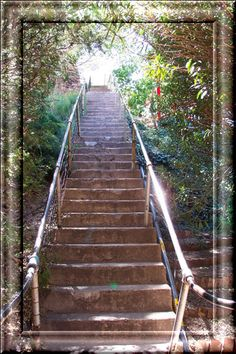 Some of the stairs for the Bisbee 1000 stair climb challenge