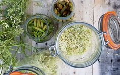 Elderflower Fizz Recipe: From Garden to Glass - Gardenista