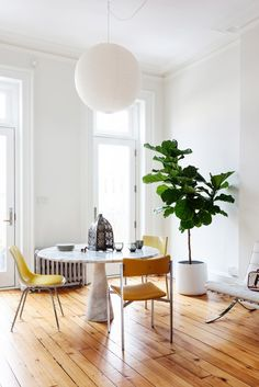 Dining space with lots of light, white light fixture, and indoor plant