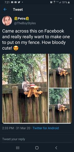 1d Day, Fence, Backyard, How To Make, Patio, Backyards