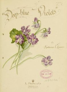 """Deep-blue violets"" (Poetry) by Katherine L. Connor, published in 1896 by L. Prang & Co. in Boston - Title page"