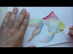 watercolor fish - YouTube