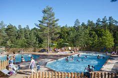 Les piscines chauffées, ouvertes sur le site et la forêt !