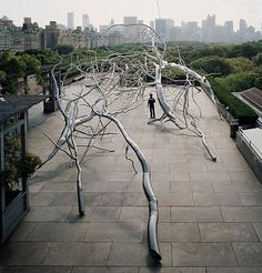 Roxy Paine  Maelstrom, 2009 Stainless steel 22 x 140 x 50 feet Installation on the roof of the  Metropolitan Museum of Art, New York
