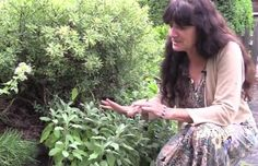 Herbalist Rosemary Gladstar Discusses Herbs for Depression and Anxiety (Video)