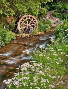 I'd like to put a waterwheel on the dock to the large pond. Rustic Water Wheel on Scenic Stream in Mill Creek Canyon, Utah Beautiful World, Beautiful Gardens, Beautiful Places, Moulin France, Water Powers, Water Mill, Salt Lake City Utah, Old Barns, Le Moulin