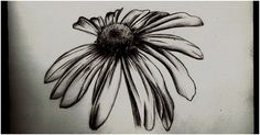Top kmaiuro311@aol.com10 Daisy Tattoo Designs