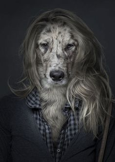 Hilarious portraits of dogs dressed like their owners by swiss photographer Sebastian Magnani