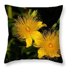 http://fineartamerica.com/products/floral-fireworks-nancy-spirakus-throw-pillow.html