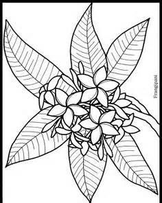 flower page printable coloring sheets | tropical flower - coloring ... - Tropical Coloring Pages Print
