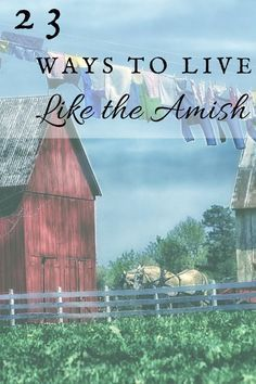 """23 Ways To Live Like The Amish: One Ash Homestead. My favorites are: """"Bloom where you're planted"""", """"be a housekeeper (as unto the Lord"""", and """"Live for today (let tomorrow worry about itself)"""""""