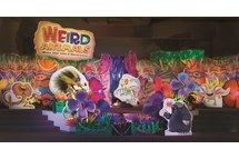 Group Decorating tips page for Weird Animal VBS 2014