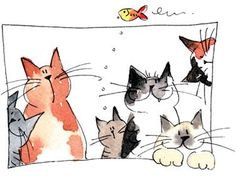 jill latter cats - Google zoeken