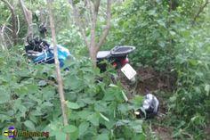 UNAIENSES: SALINAS-MG - Polícia apreende moto roubada em mata...