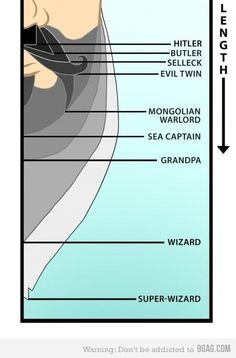 Level of Beard Epicness