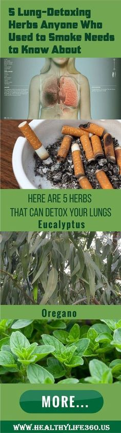 If you are ex cigarette smoker you, can effectively detox your lungs with these herbs. Detox techniques are 100% natural without any side effects.