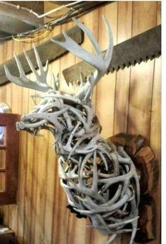 Awesome!! Deer head trophy make from deer horns