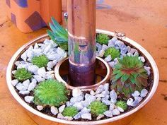 Upcycle old Jello pans or angel food cake pans and turn them into succulent planters and they fit right around your patio umbrella pole :) So cute on the table ~Frisky