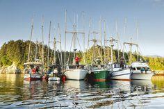 Die Fischerei ist immer noch einer der größten Arbeitgeber Alaskas und viele Unternehmen sind Familienbetriebe mit kleinen Booten.