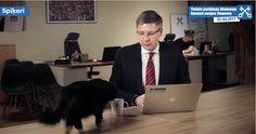 (Video) Un gato se cuela durante transmisión a beber un poco de café - http://www.esnoticiaveracruz.com/video-un-gato-se-cuela-durante-transmision-a-beber-un-poco-de-cafe/