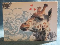 Giraffe Valentine's Day card