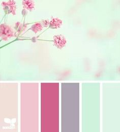 cherry blossom color palette