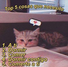 Fb Memes, Best Memes, Funny Memes, Cute Cat Memes, Cute Love Memes, Simpsons Videos, Funny Spanish Memes, Tumblr Love, Anime Couples Drawings