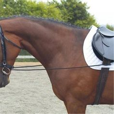 Established in 1980 Ride-away is at the heart of the Equestrian community - Providing high quality equestrian clothing, equipment and footwear. Equestrian Outfits, Training Equipment, Horse Riding, Horses, Tack, Room, Bedroom, Workout Attire, Horse