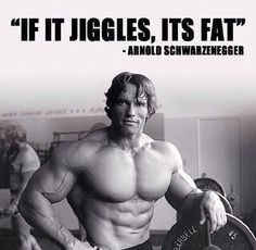 ILYKS.COM - Picture of Arnold Schwarzenegger during his hay day with his known comment Simple