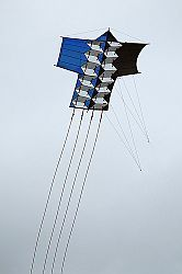 A great artistic Sode kite.