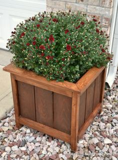 Cedar planter with mitered top ~ afternoon DIY project for under $20! | made by infarrantly creative from free plans at Ana-White.com