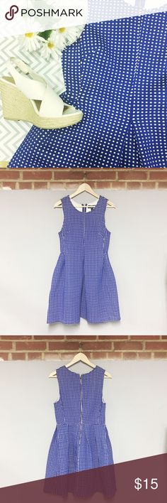 50's Style Blue Checkered Dress Want to accentuate that hourglass figure? Or channel your inner Alice in Wonderland? This Blue Rain dress is perfect! This pleated, blue-checkered aline dress is flattering, and perfect for those bright summer days! Pair with some white wedges for a look perfect for a summer wedding or picnic! Lightly worn, pictured above some pilling in the checks. Otherwise in great condition! Make an offer!  Francesca's Collections Dresses