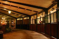 écuries intérieures inside horse stable