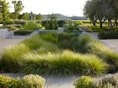 south african indigenous garden designs - Google 검색