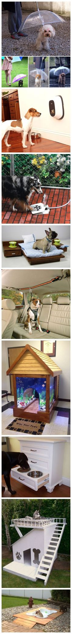 Creative products for doggies! Cooool! For more inspirations, visit us at http://www.facebook.com/zosomart