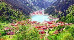 Uzungöl,Uzungol.com Trabzon
