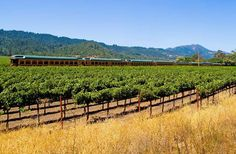 World's 15 most scenic train rides:Fun fact: The Wine Train tracks were originally laid in the 1860s to bring guests to the hot springs resort town of Calistoga.