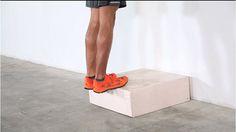 hip flexion contracture gait