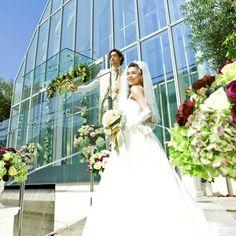 リビエラ東京 http://wedding.rakuten.co.jp/hall/wed0000140/