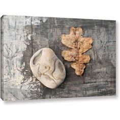 Elena Ray Still Life Leaf Stone Gallery-Wrapped Canvas Art, Size: 24 x 36, Silver