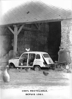 Renault 4s don't die, they just become chicken coops