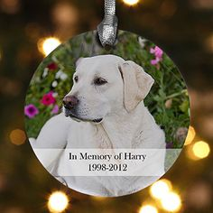 Personalized Pet Memorial Photo Christmas Ornament - 12126 I want to make one of these this year for my Yorkie, Ginger, who just passed away yesterday.  Forever in our hearts- such a sweet, little dog.