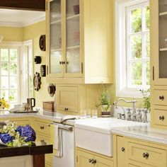 Colorful Farmhouse Kitchen Ideas !. (I like the cupboards on the countertop.)