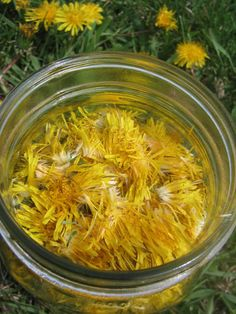 Ford Ranger Parts and Dandelion Wine