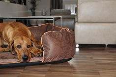 Box bed for dog - handmade product by DOOOP