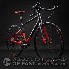 Silverback Bikes - Lightweight Performance Bicycles - Best in class Fat Bike, Kids Bike, Road Bikes, Bicycles, Mountain Biking, Products, Bike, Gadget, Bicycle