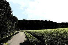 Hengsengen in July 25, 2014.